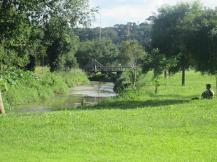 rio barigui parque tingui