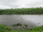 o grande rio