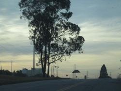 contorno sul rodovia estrada ctba cic z/o juscelino kubitschek avenida jk árvore fio torre alta tensão céu nublado anoitecer entardecer nuvens ponto ônibus parada